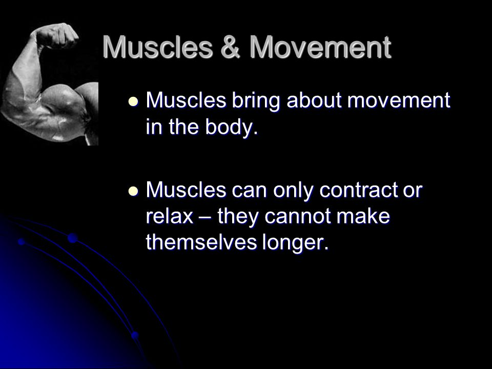 Muscles & Movement Muscles bring about movement in the body.