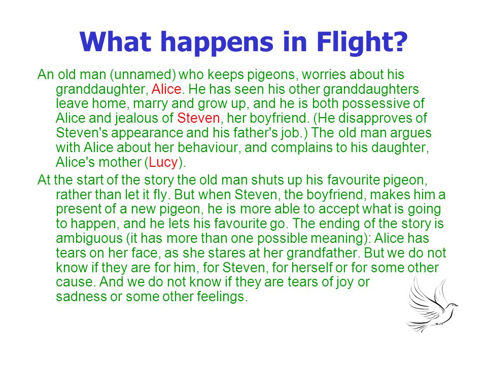 What happens in Flight