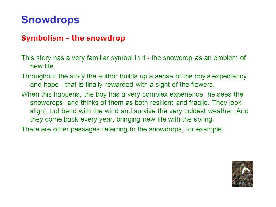Snowdrops Symbolism - the snowdrop