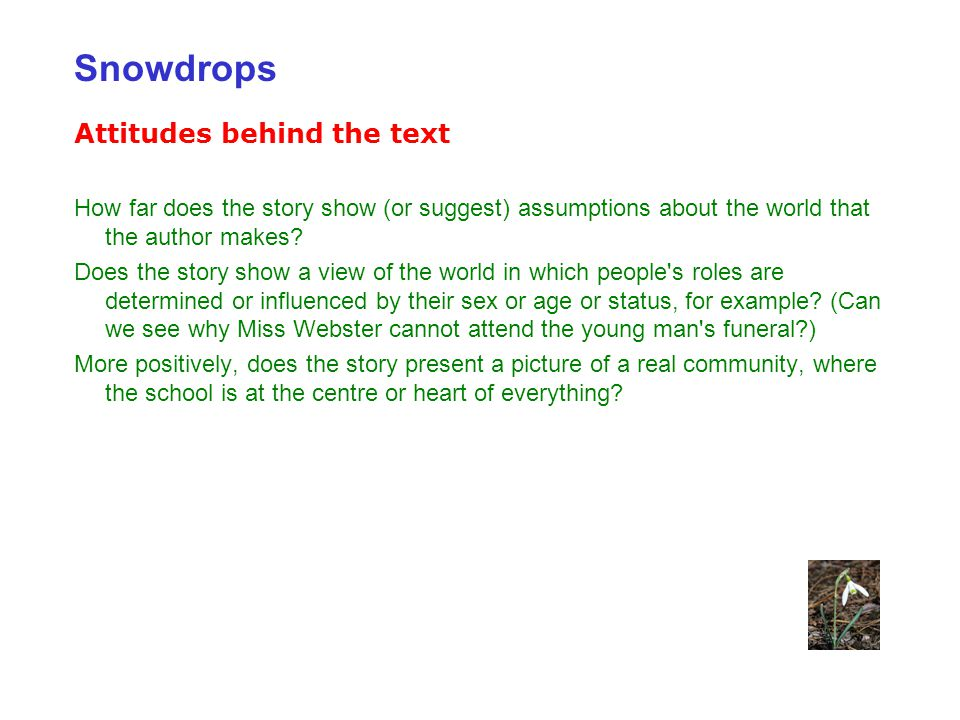 Snowdrops Attitudes behind the text
