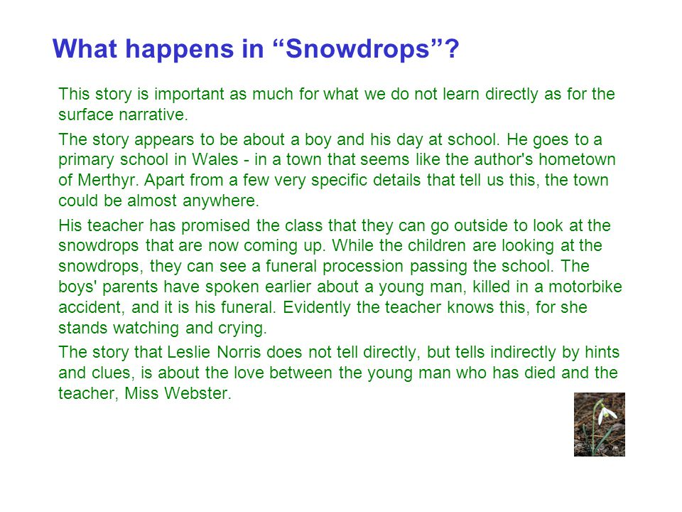 What happens in Snowdrops