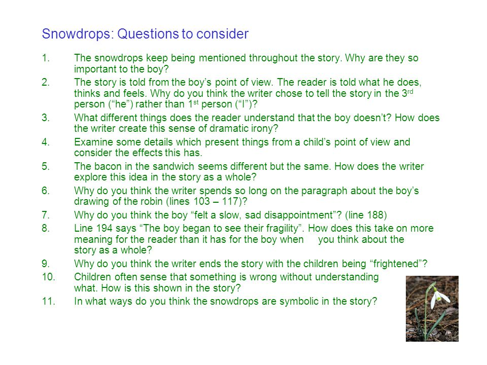 Snowdrops: Questions to consider