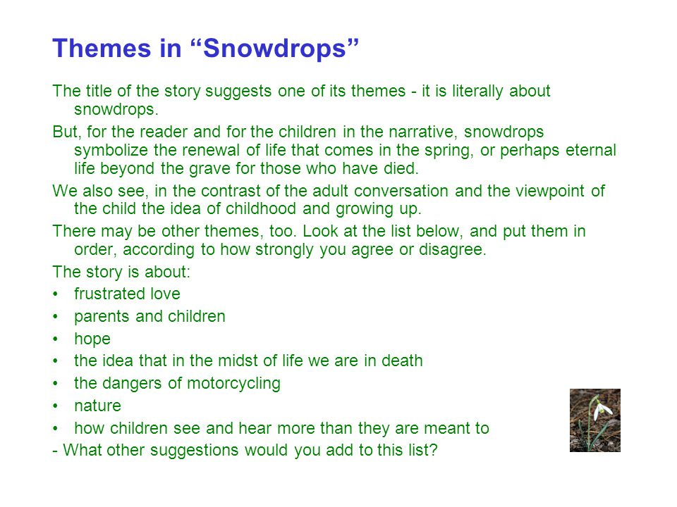 Themes in Snowdrops The title of the story suggests one of its themes - it is literally about snowdrops.