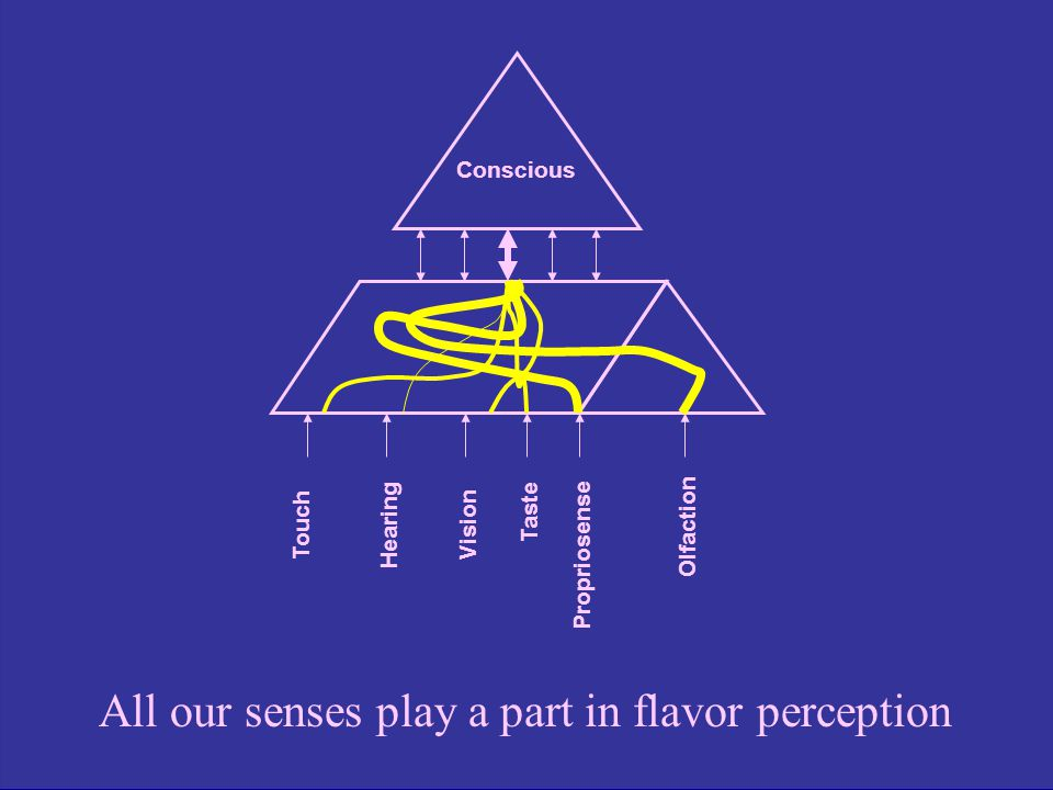 All our senses play a part in flavor perception
