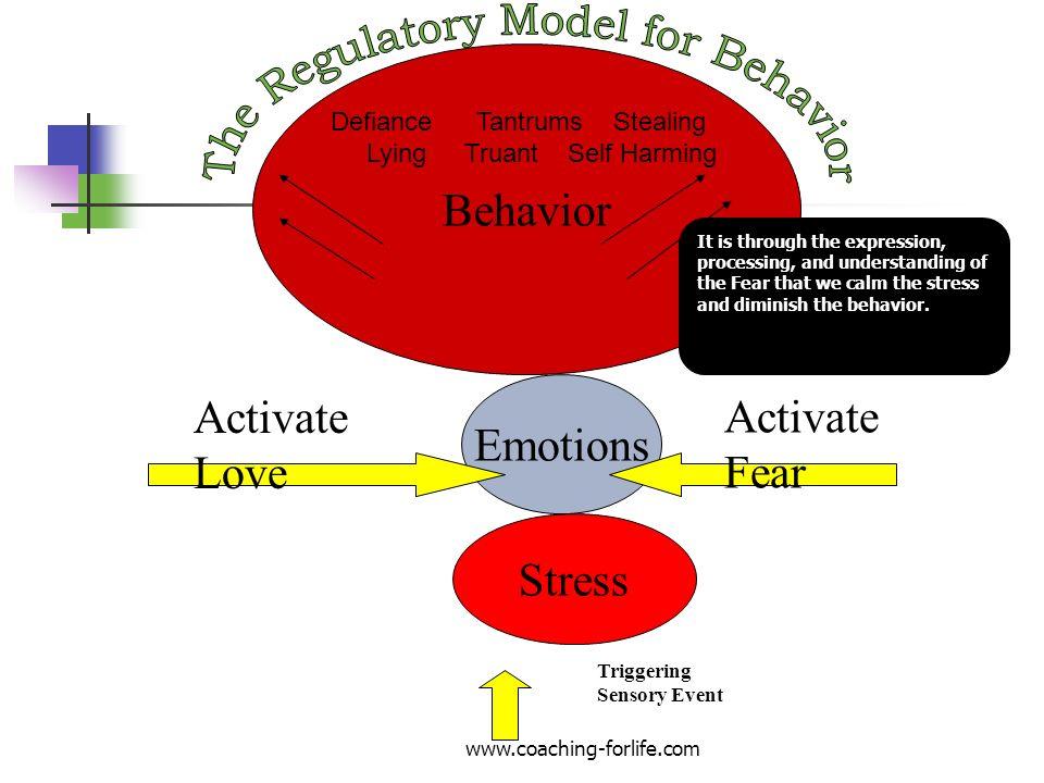 The Regulatory Model for Behavior