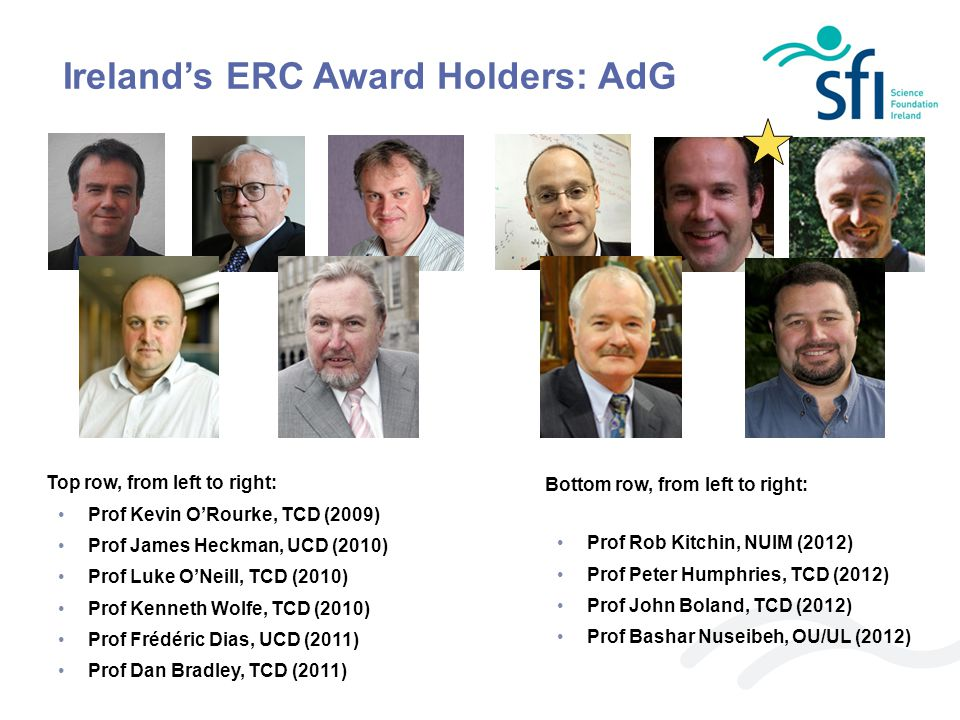 Ireland's ERC Award Holders: AdG