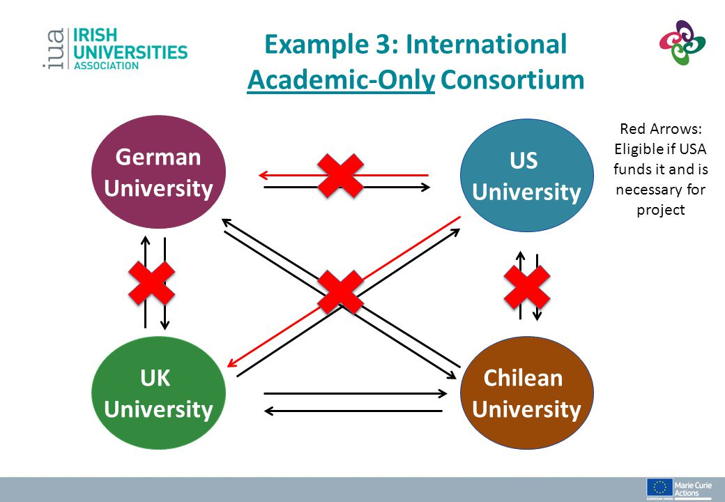 Example 3: International Academic-Only Consortium