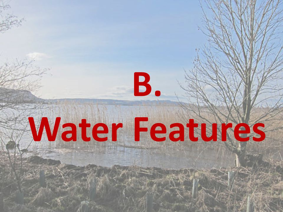 B. Water Features