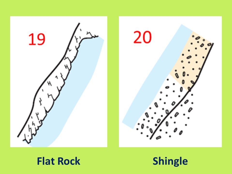 Flat Rock Shingle