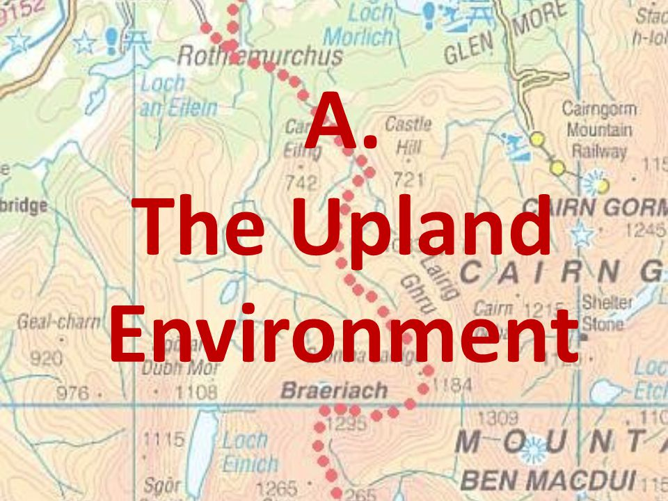 The Upland Environment