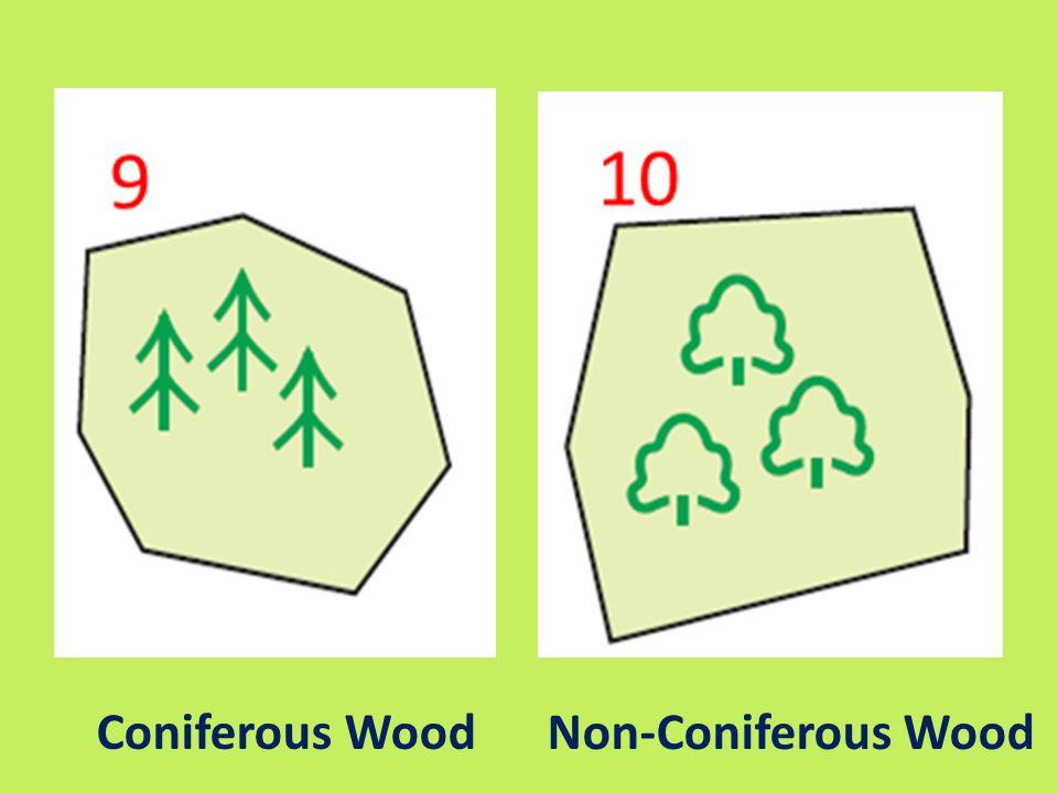Coniferous Wood Non-Coniferous Wood
