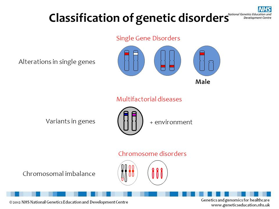 Classification of genetic disorders