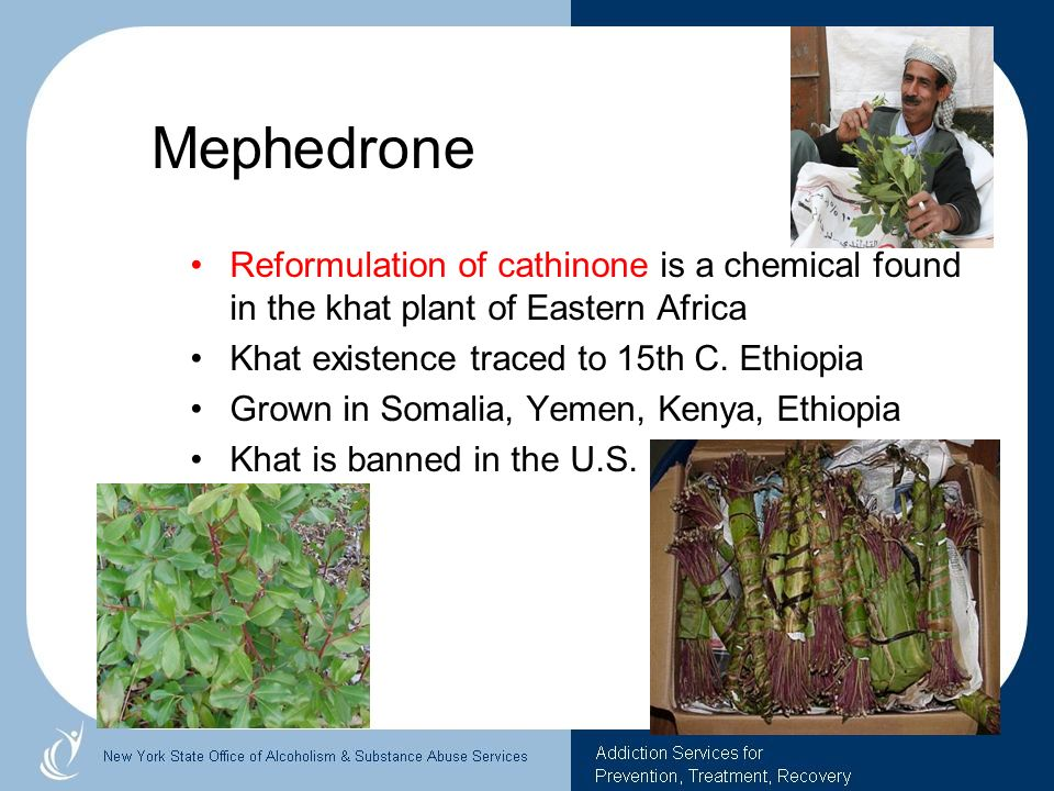 Mephedrone Reformulation of cathinone is a chemical found in the khat plant of Eastern Africa. Khat existence traced to 15th C. Ethiopia.