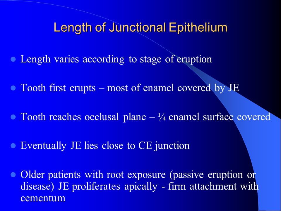Length of Junctional Epithelium