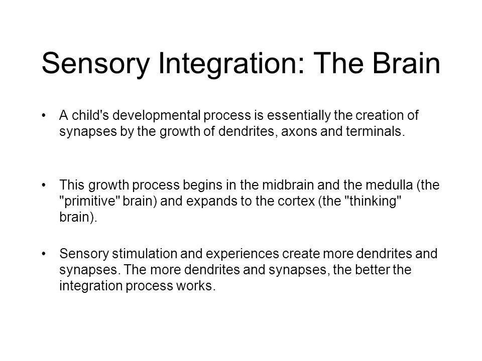 Sensory Integration: The Brain