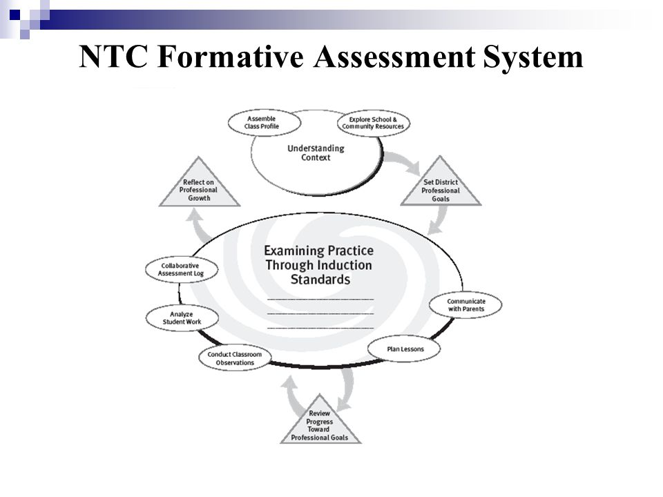 NTC Formative Assessment System