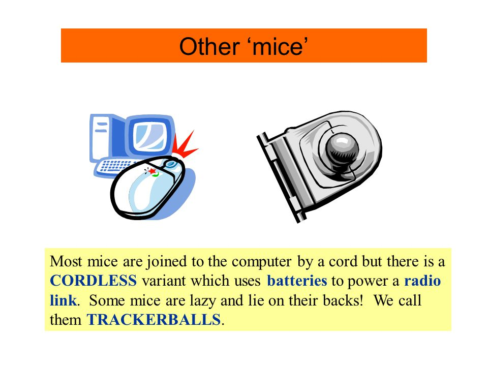 Other 'Mice' Info. Other 'mice'