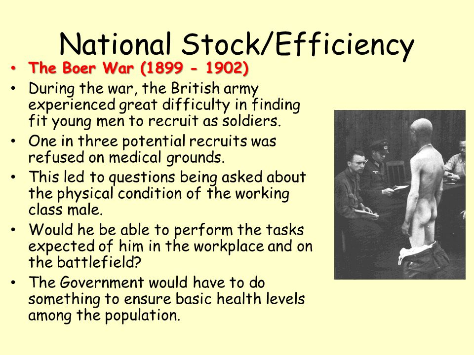 National Stock/Efficiency