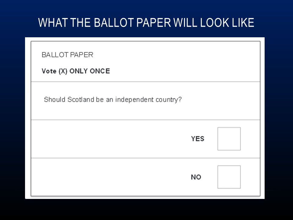 What the ballot paper will look like