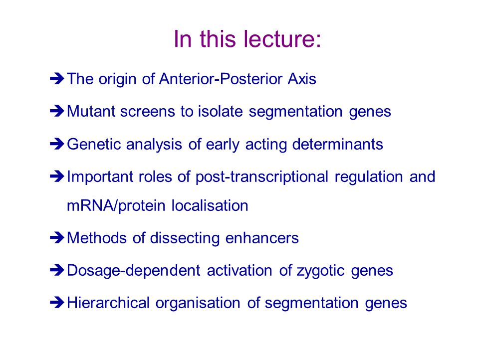 In this lecture: The origin of Anterior-Posterior Axis