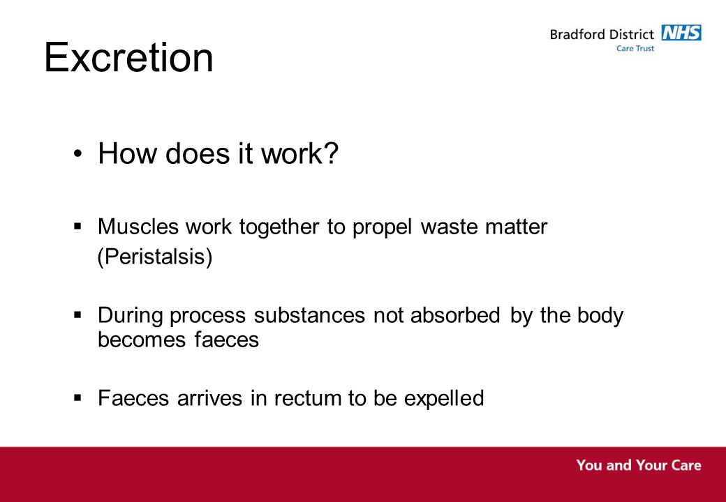 Excretion How does it work