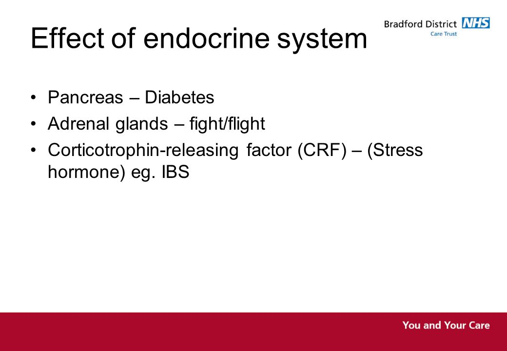 Effect of endocrine system