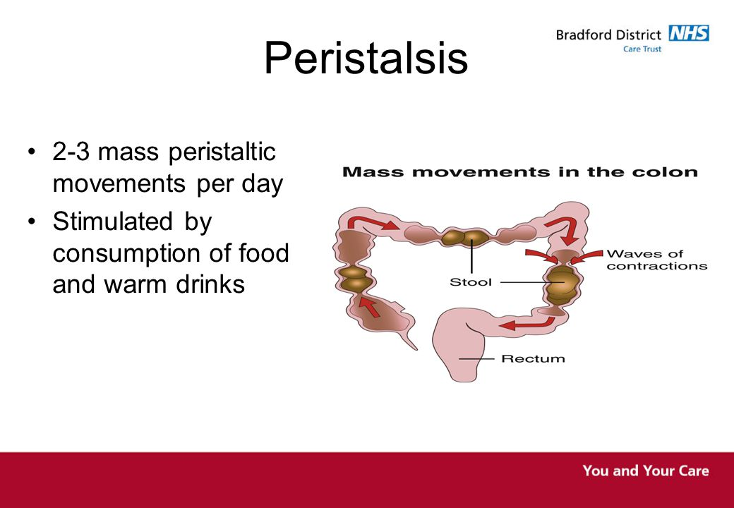 Peristalsis 2-3 mass peristaltic movements per day