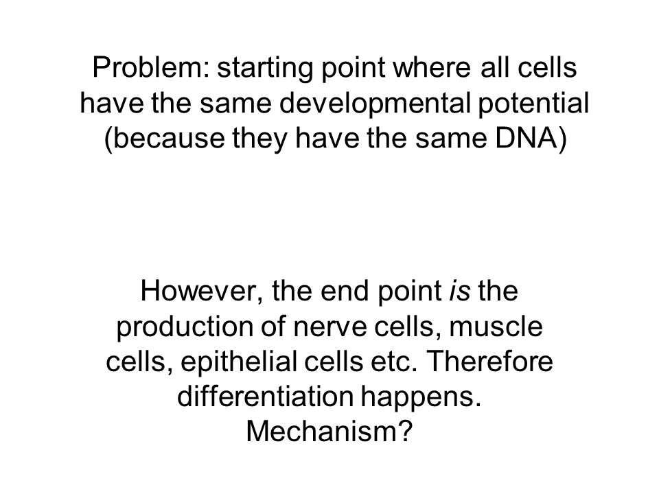 Problem: starting point where all cells have the same developmental potential (because they have the same DNA)