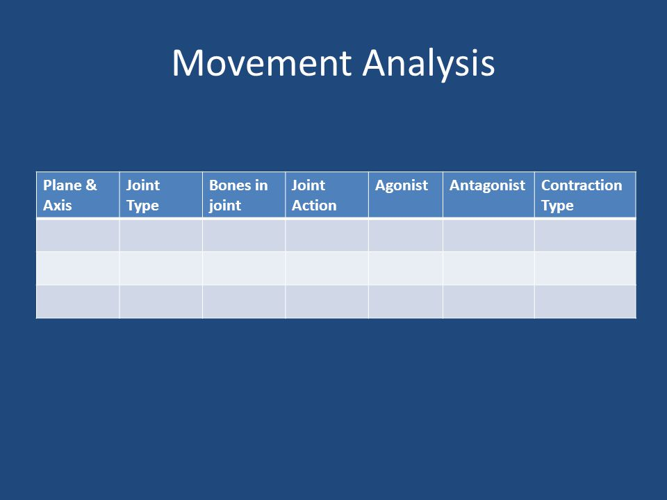 Movement Analysis Plane & Axis Joint Type Bones in joint Joint Action