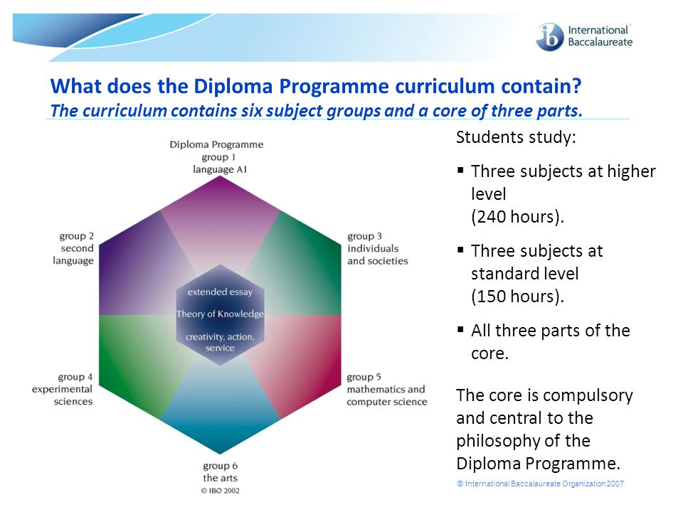 What does the Diploma Programme curriculum contain