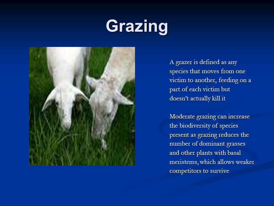 Grazing A grazer is defined as any species that moves from one