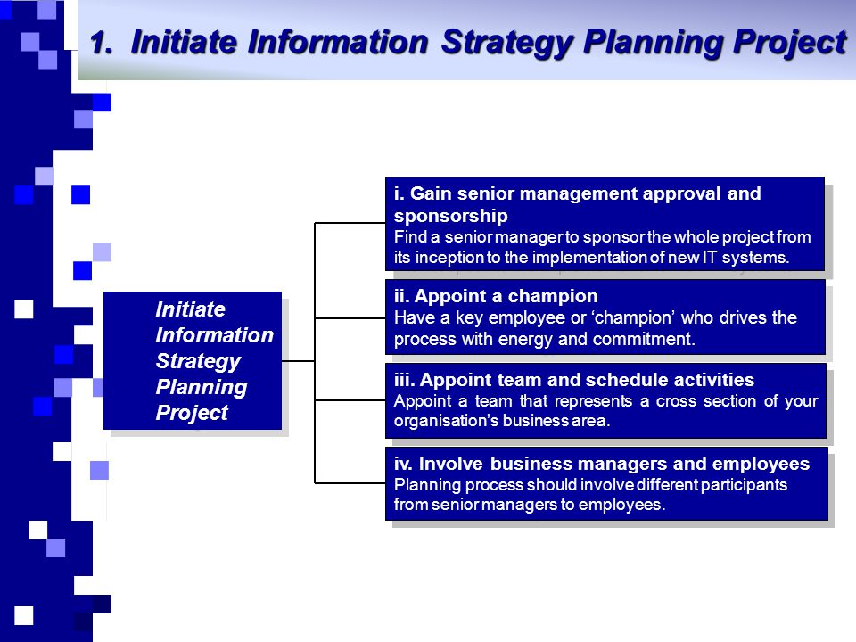 Initiate Information Strategy Planning Project