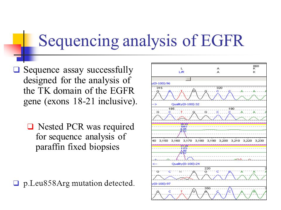 Sequencing analysis of EGFR