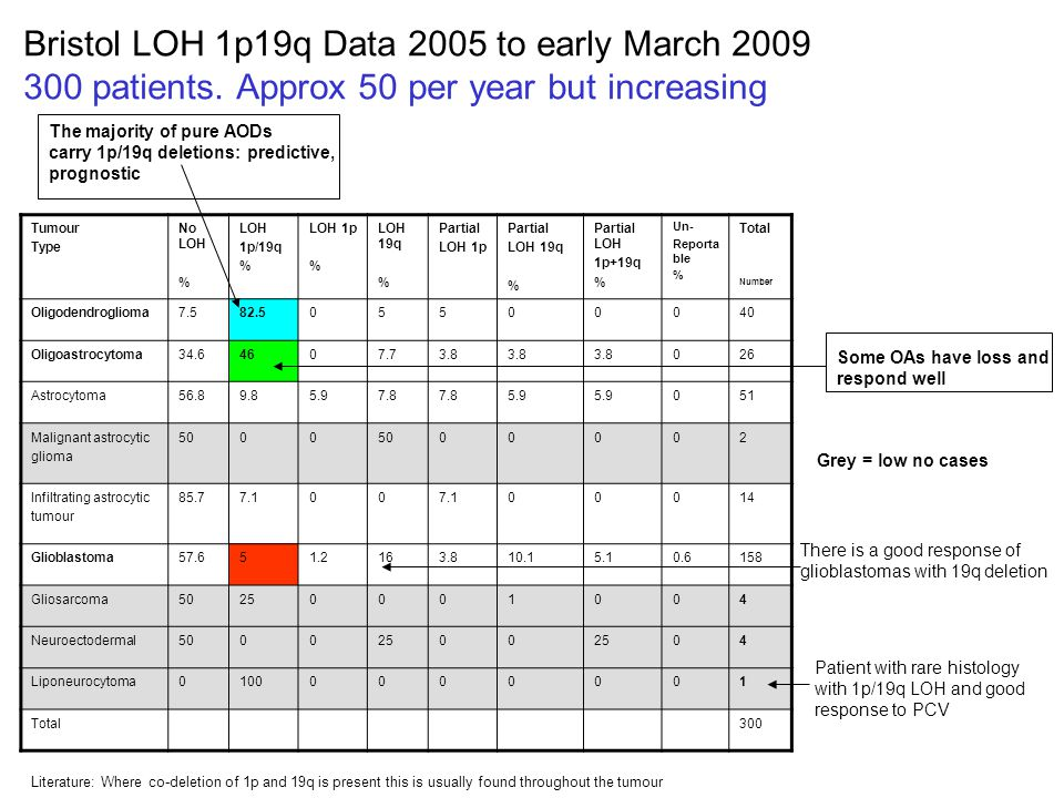 Bristol LOH 1p19q Data 2005 to early March 2009 300 patients