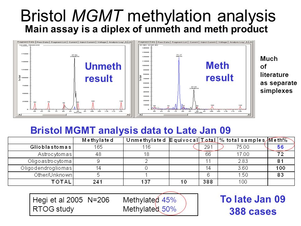 Bristol MGMT methylation analysis