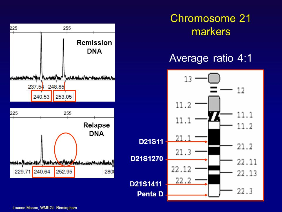 Chromosome 21 markers Average ratio 4:1