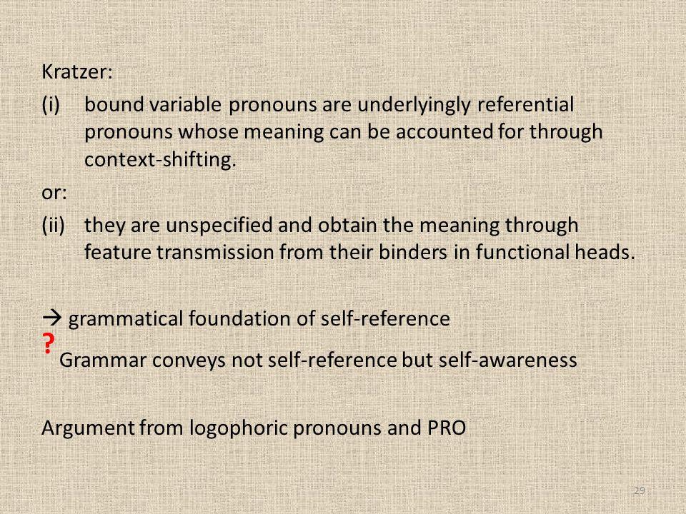 Grammar conveys not self-reference but self-awareness