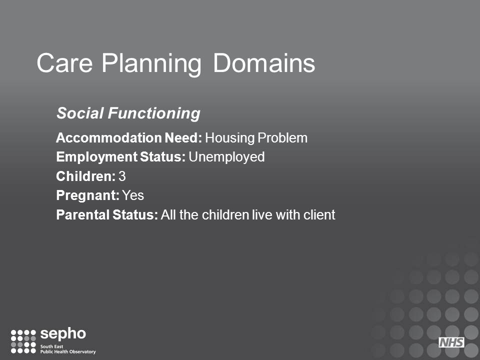 Care Planning Domains Social Functioning