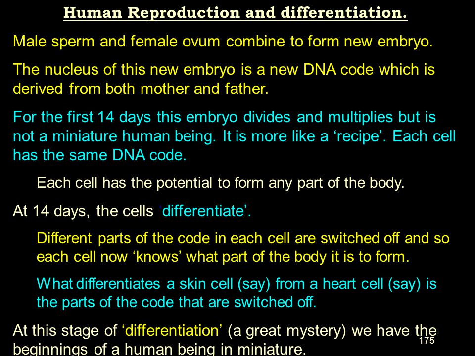 Human Reproduction and differentiation.