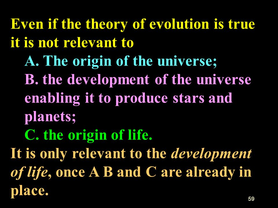 Even if the theory of evolution is true it is not relevant to