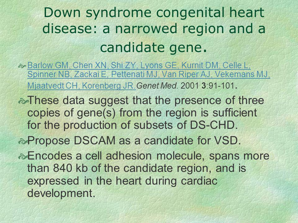 Down syndrome congenital heart disease: a narrowed region and a candidate gene.