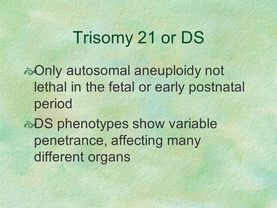 Trisomy 21 or DS Only autosomal aneuploidy not lethal in the fetal or early postnatal period.