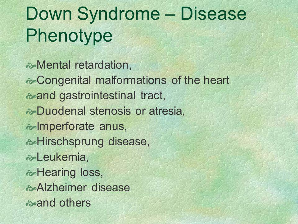 Down Syndrome – Disease Phenotype