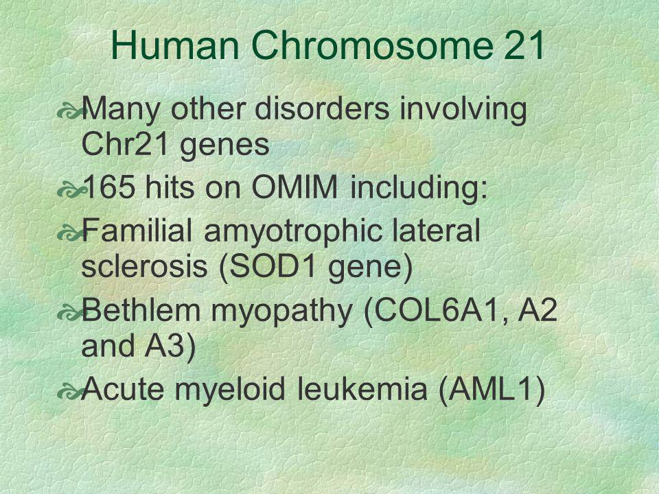 Human Chromosome 21 Many other disorders involving Chr21 genes