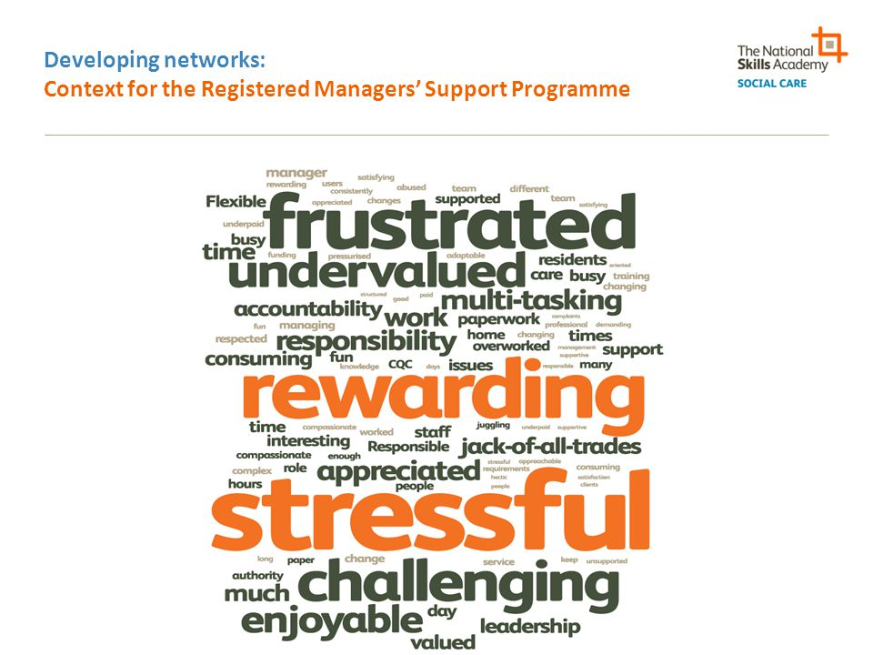 Developing networks: Context for the Registered Managers' Support Programme