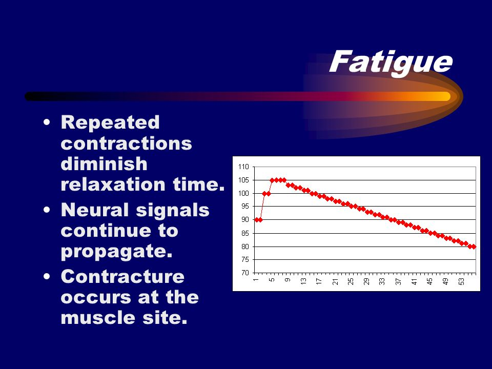 Fatigue Repeated contractions diminish relaxation time.