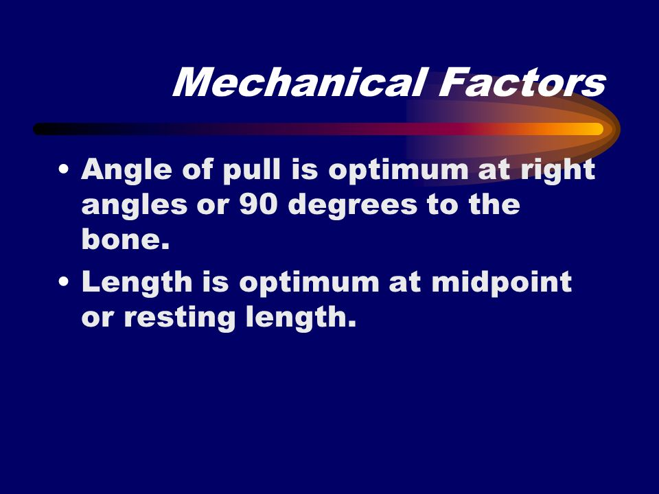 Mechanical Factors Angle of pull is optimum at right angles or 90 degrees to the bone.