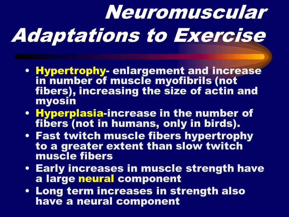 Neuromuscular Adaptations to Exercise