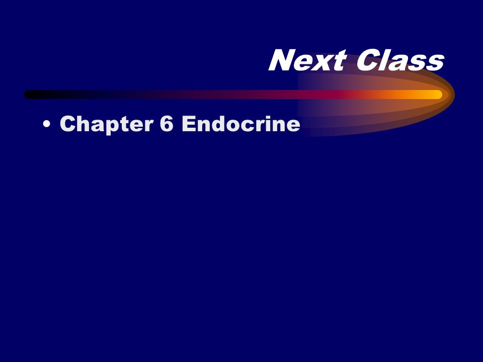 Next Class Chapter 6 Endocrine