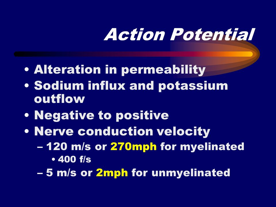 Action Potential Alteration in permeability